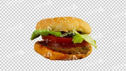 وکتور png ساندویچ 51